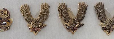 Emblemas 1